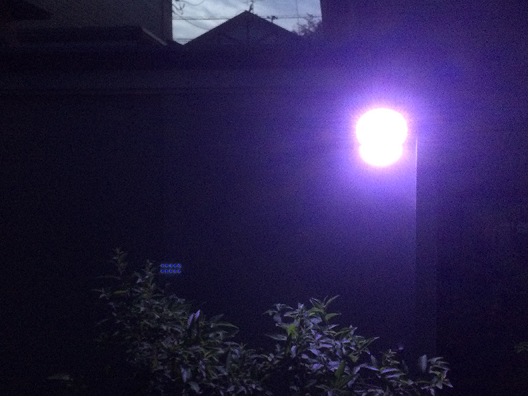 センサー式ライト夜間物置点灯写真